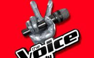 """The Voice of Italy"": due salentine superano le blind audition"